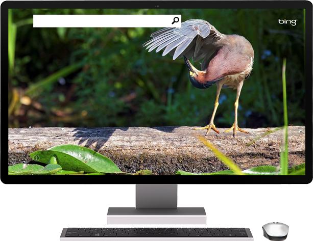 tienda.tpu.mx - Windows 8 Pro - Bing
